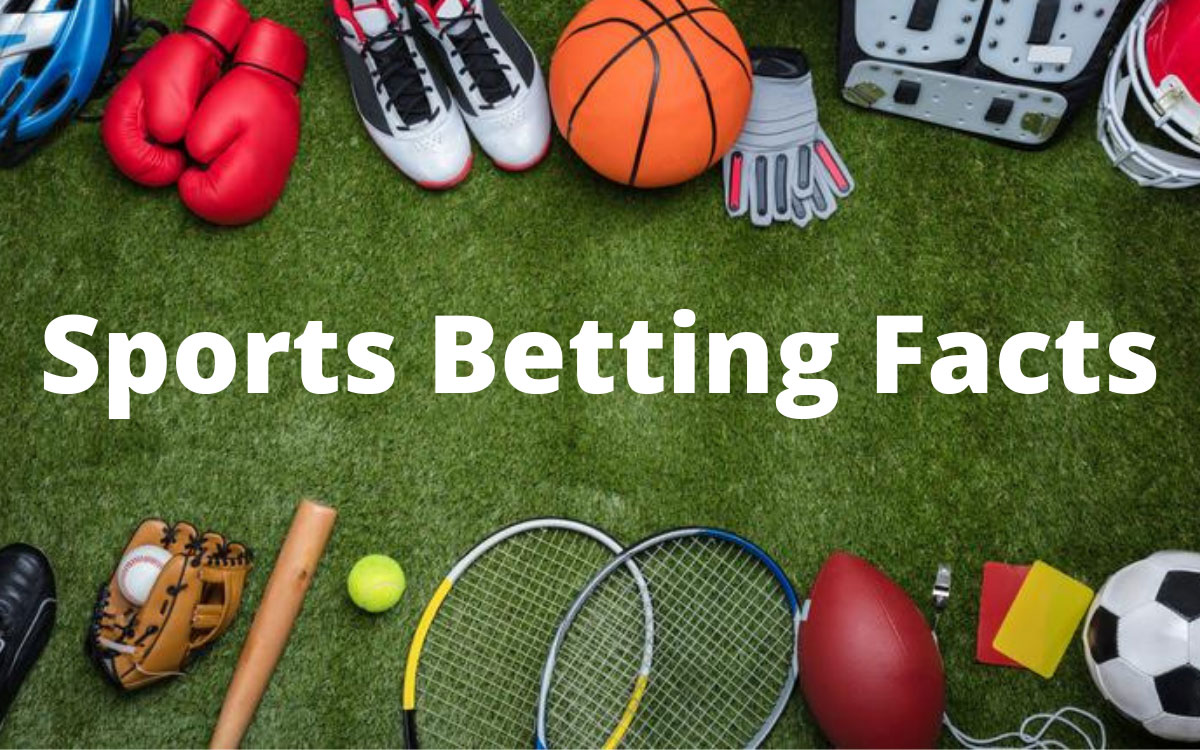 How people are attracted to sports betting in India facts?